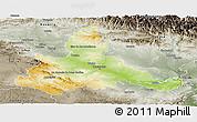 Physical Panoramic Map of Zaragoza, semi-desaturated
