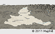Shaded Relief Panoramic Map of Zaragoza, darken