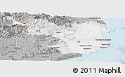 Gray Panoramic Map of Gerona