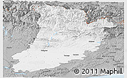Gray Panoramic Map of Lérida