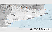 Gray Panoramic Map of Cataluna