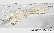 Shaded Relief Panoramic Map of Tarragona, desaturated