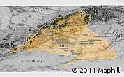 Satellite Panoramic Map of Madrid, desaturated