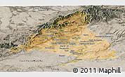 Satellite Panoramic Map of Madrid, semi-desaturated