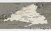 Shaded Relief Panoramic Map of Madrid, darken