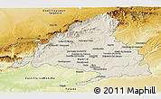 Shaded Relief Panoramic Map of Madrid, physical outside