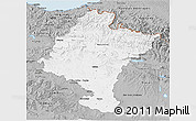 Gray 3D Map of Navarra