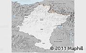 Gray 3D Map of Navarra