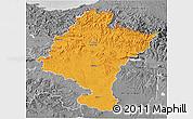 Political 3D Map of Navarra, desaturated