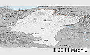 Gray Panoramic Map of Navarra