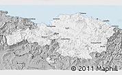 Gray 3D Map of Viscaya