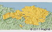 Savanna Style 3D Map of Viscaya