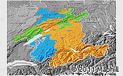 Political 3D Map of Espace Mittelland, desaturated