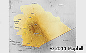 Physical 3D Map of As Suwayda, desaturated