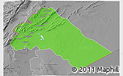 Political 3D Map of Dimashq, desaturated