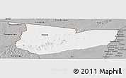Gray Panoramic Map of Tone