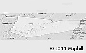 Silver Style Panoramic Map of Tone