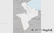 Gray 3D Map of Region 7