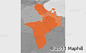 Political Shades 3D Map of Region 7, desaturated