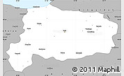 Gray Simple Map of Bolu