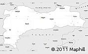 Silver Style Simple Map of Erzincan