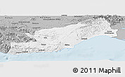 Gray Panoramic Map of Icel