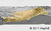 Satellite Panoramic Map of Icel, desaturated