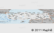 Gray Panoramic Map of Turkey