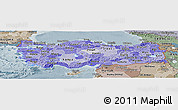 Political Shades Panoramic Map of Turkey, semi-desaturated