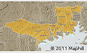 Physical Map of Mpigi, semi-desaturated