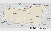 Shaded Relief Panoramic Map of Chernihivs'ka, desaturated