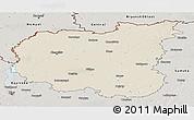 Shaded Relief Panoramic Map of Chernihivs'ka, semi-desaturated