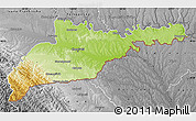 Physical Map of Chernivets'ka, desaturated