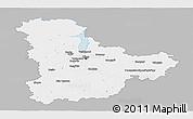 Gray Panoramic Map of Kyyivs'ka, single color outside