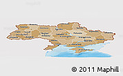 Political Shades Panoramic Map of Ukraine, single color outside