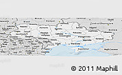 Silver Style Panoramic Map of Ukraine