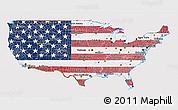 Flag 3D Map of United States