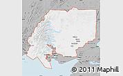 Gray Map of ZIP code 00001