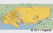 Savanna Style Panoramic Map of ZIP code 00001
