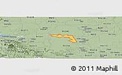 Savanna Style Panoramic Map of ZIP code 95219