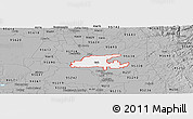 Gray Panoramic Map of ZIP code 95632