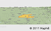 Savanna Style Panoramic Map of ZIP code 95632