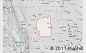 Silver Style Map of ZIP code 95695
