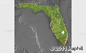 Satellite Map of Florida, desaturated