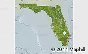 Satellite Map of Florida, lighten