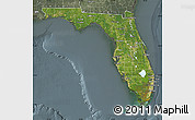 Satellite Map of Florida, semi-desaturated