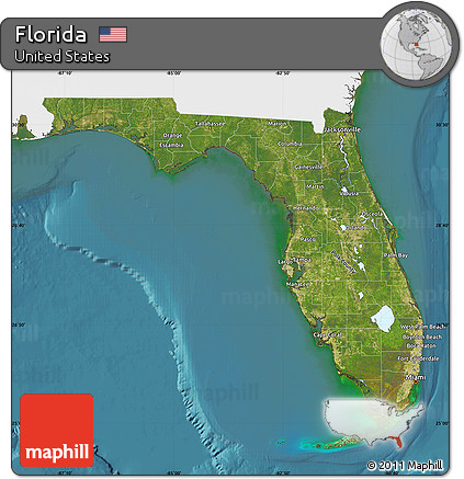 Free Satellite Map of Florida, single color outside on dunnellon fl on map of florida, computer map of florida, flood map of florida, google maps florida, live satellite map florida, traffic map of florida, telephone map of florida, map map of florida, view of tampa florida, marine map of florida, live radar weather map florida, full large map of florida, ups map florida, transportation of florida, detailed map of florida, hd map of florida, aerial of florida, drought map of florida, digital map of florida, satellite view of orlando,