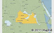 Savanna Style Map of Seminole County