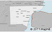 Gray 3D Map of Wayne County