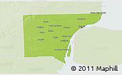 Physical 3D Map of Wayne County, lighten